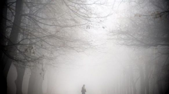 espesa niebla