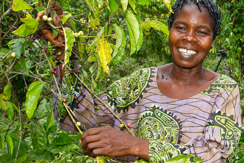 Mujer en una plantación de cacao de Costa de Marfil