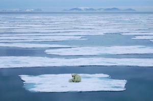 Se-derrite-cada-vez-más-el-hielo-ártico-NASA1
